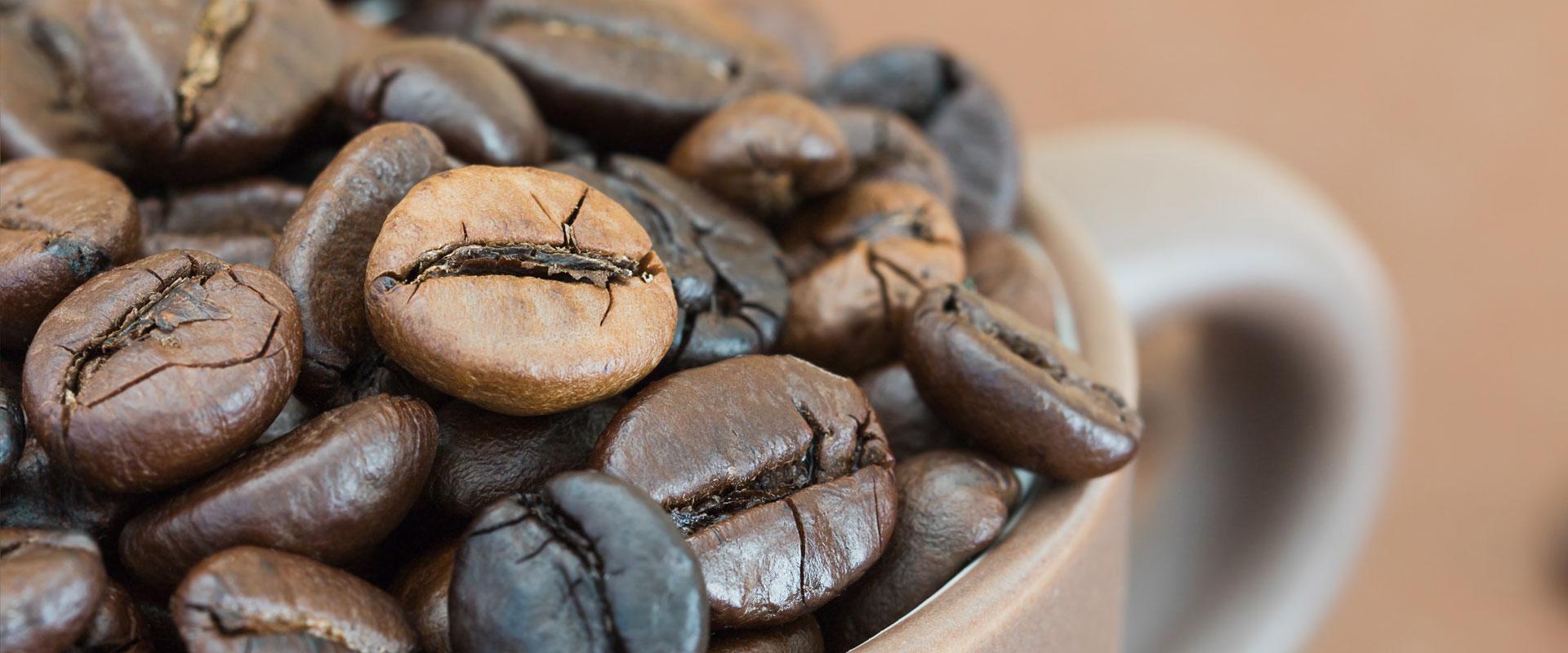 orizont line caffè, distributori, snack