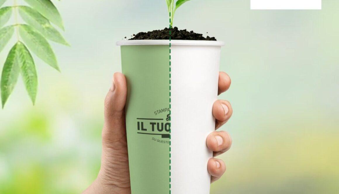 Bicchieri Compostabili miglior prezzo Canton Ticino